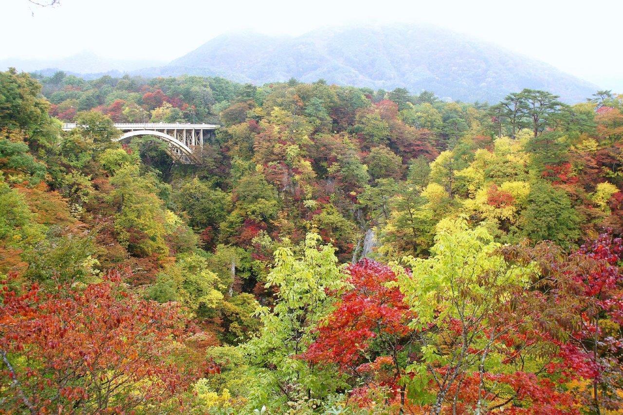 鳴子峡にかかる大深沢橋と色付いた紅葉は絶景