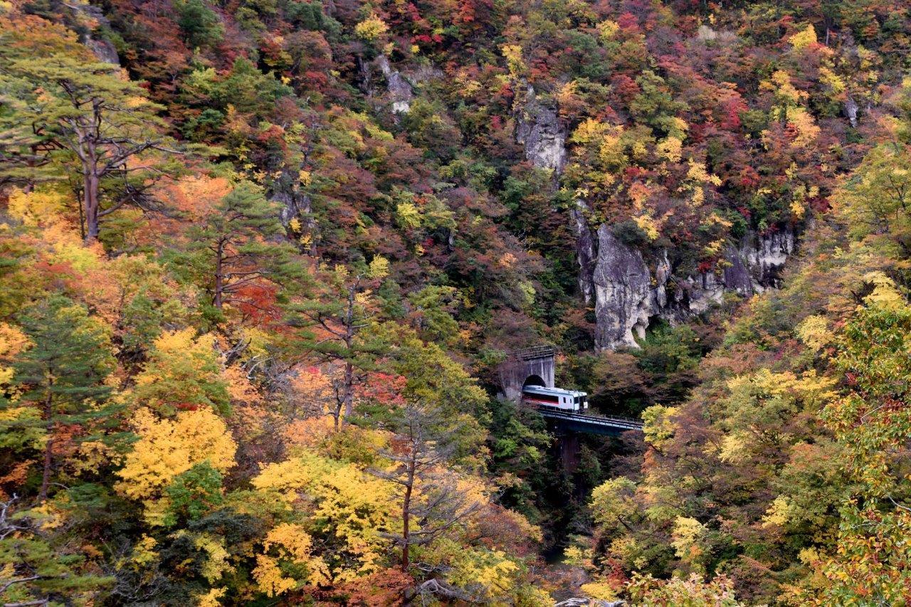 秋の鳴子峡を走る陸羽東線と紅葉
