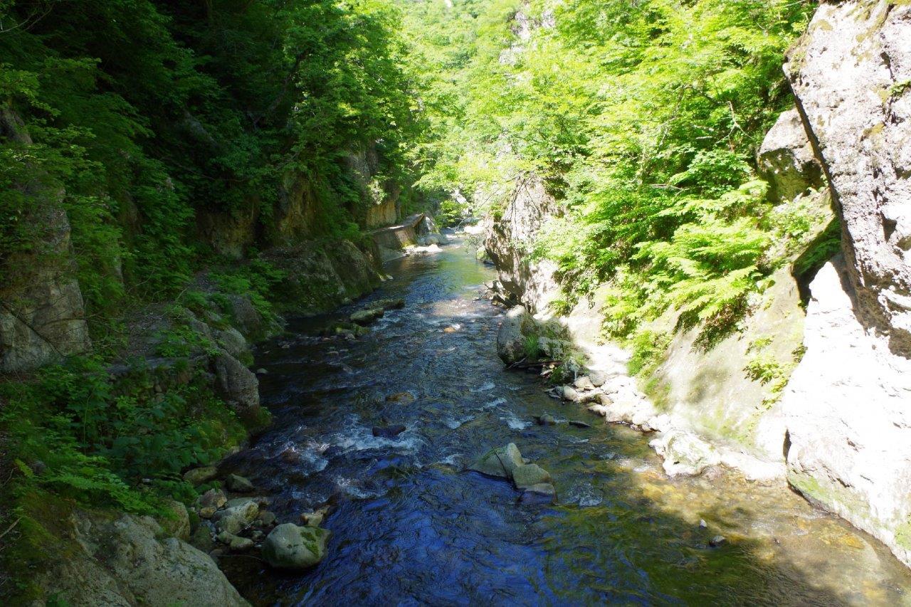 鳴子峡を流れる渓流