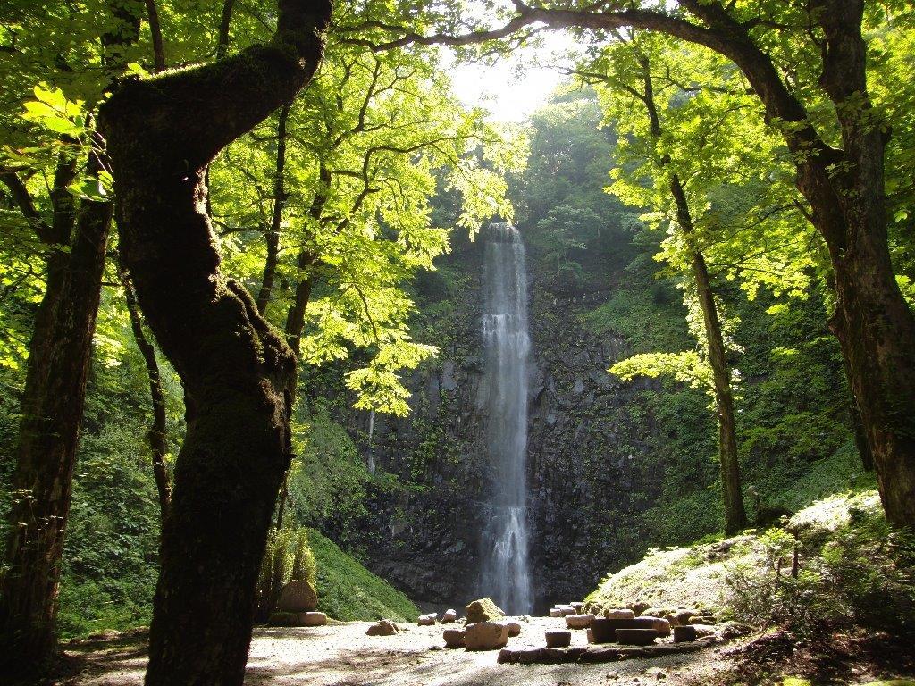 勢いよく流れる落ちる玉簾の滝