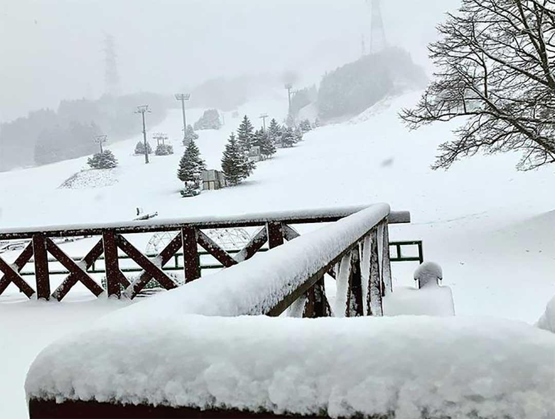 新雪が積もるゲレンデ