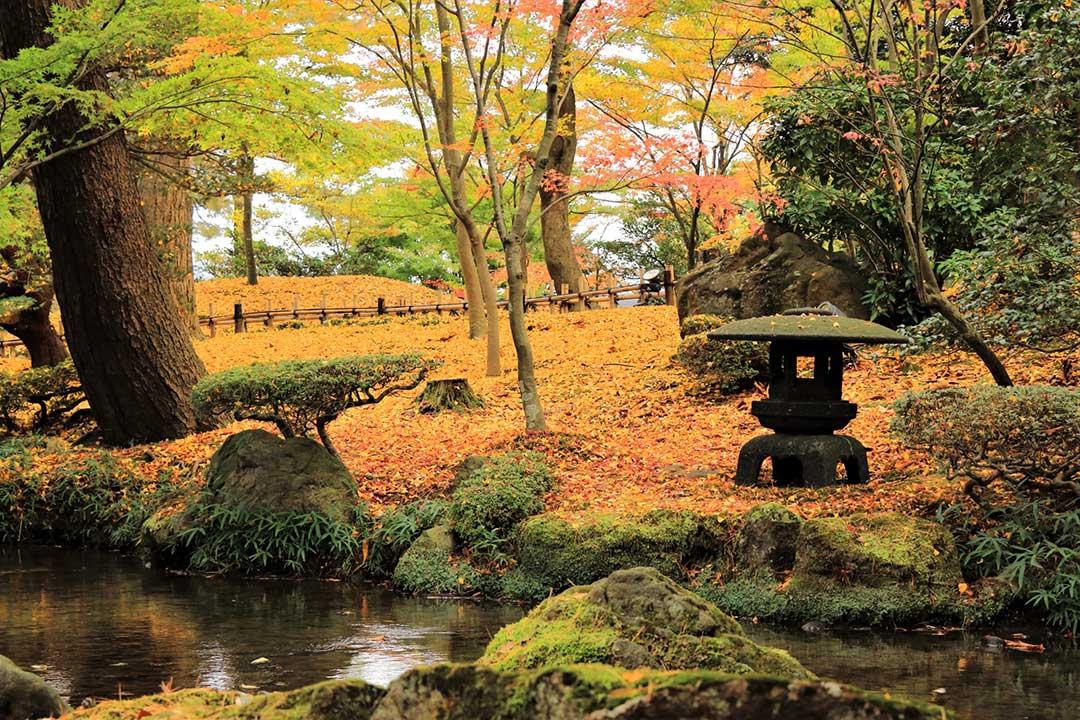 紅葉の季節の兼六園
