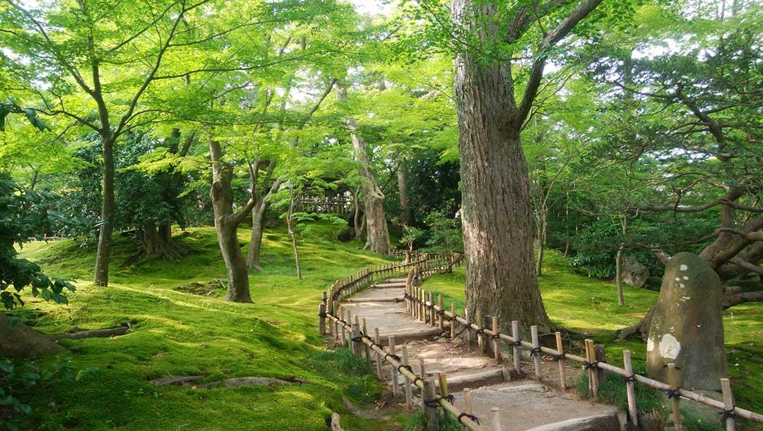 新緑の清々しい空気に満ちています
