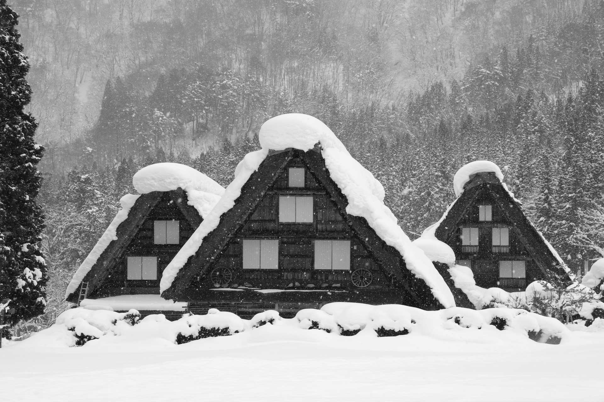 雪景色がよく似合います