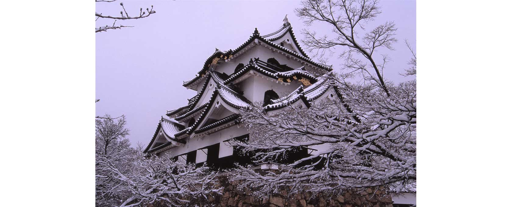 冬化粧の彦根城
