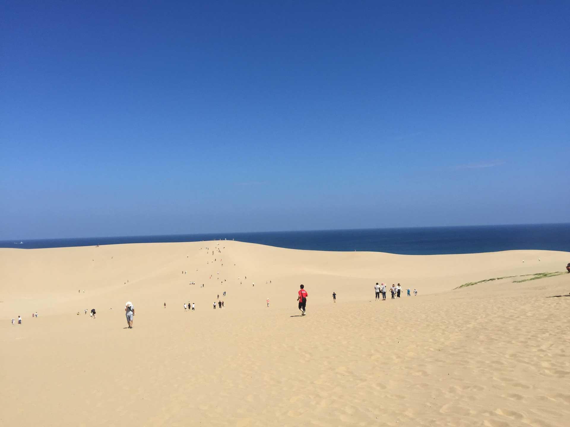 日本にいながら砂漠感を味わえる非日常空間