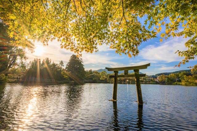 沈む秋の太陽と金鱗湖