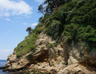 猿島まで片道約10分の船旅