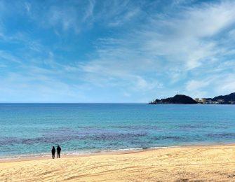 県内外から海水浴客が訪れる海水浴場