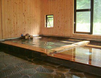 奈良田 美肌の湯