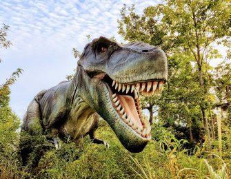 まるで本物!?ティラノサウルス