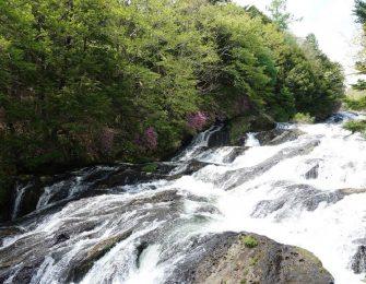 幅10mほどの岩場を勢いよく流れる渓流爆
