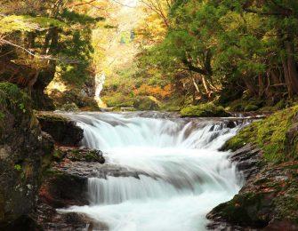 岩見川上流を流れる伏伸の滝