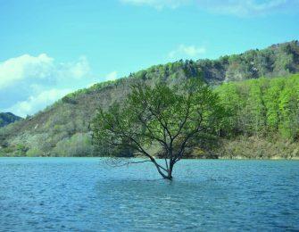 最上川の上流にある白川湖