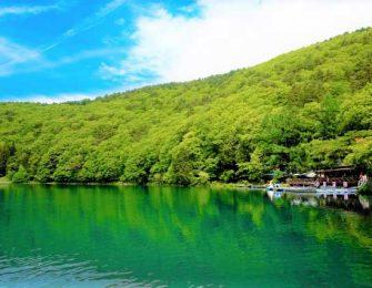 初夏の四尾連湖