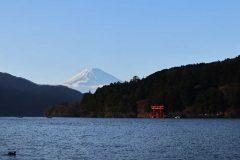 箱根神社の平和の鳥居