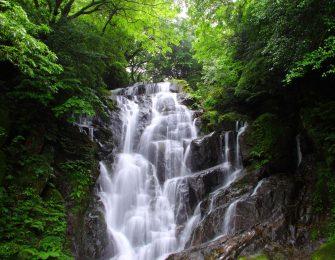 落差約24メートルの白糸の滝