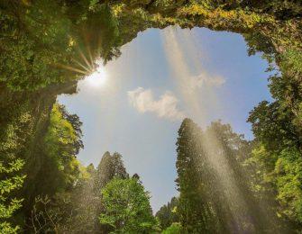 木漏れ日と壇鏡の滝
