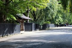 新緑に覆われる角館・武家屋敷