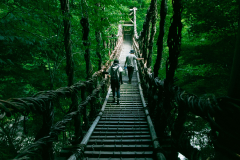 徳島県 祖谷の吊り橋(徳島県祖谷渓)