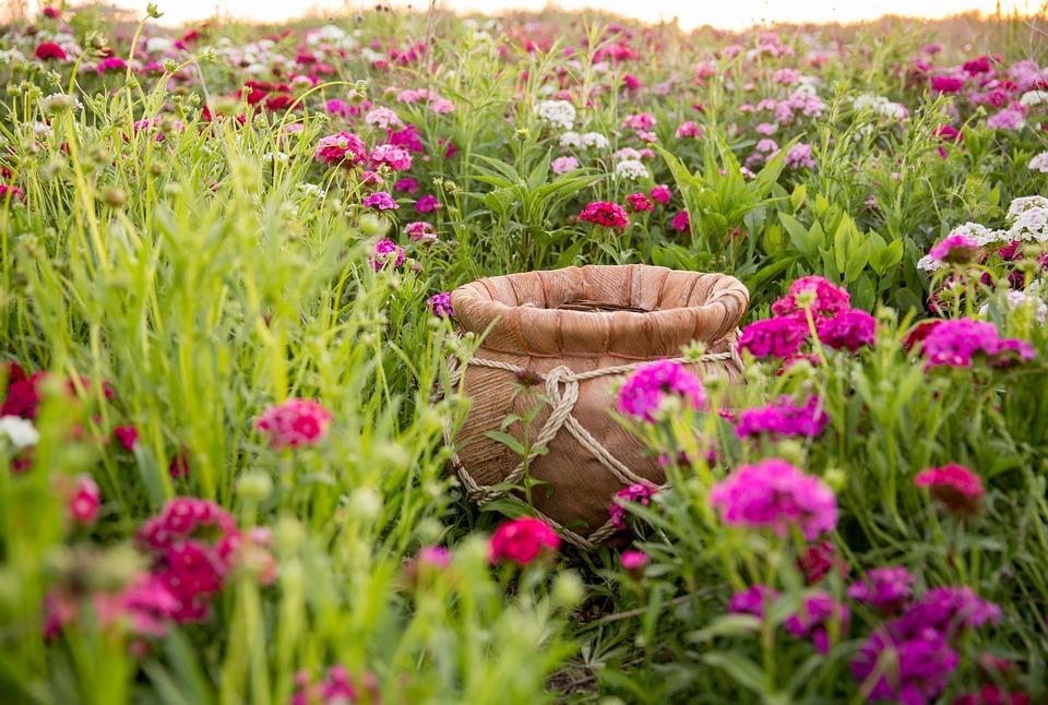 花畑とカゴ